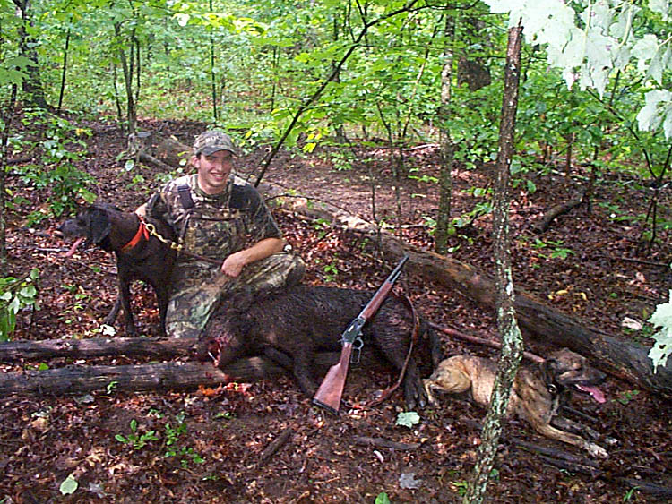 ... wild boar you might want to consider using hounds on your boar hunt
