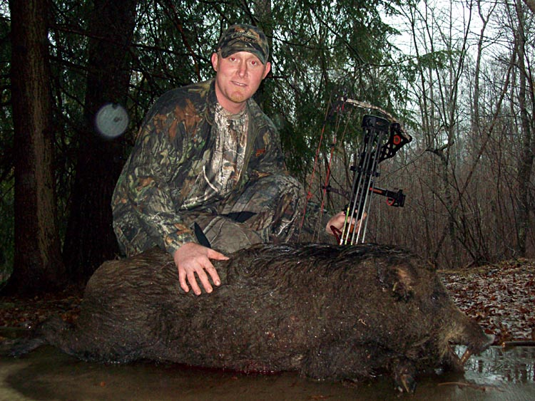 Tennessee Boar Hunting Picture