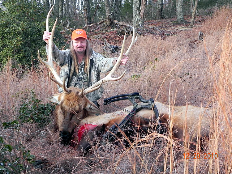 Tennessee Elk Hunting